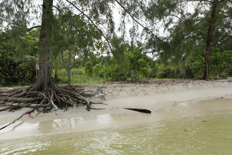 Biała piasek plaża w Koh Rong wyspie w Kambodża obraz stock