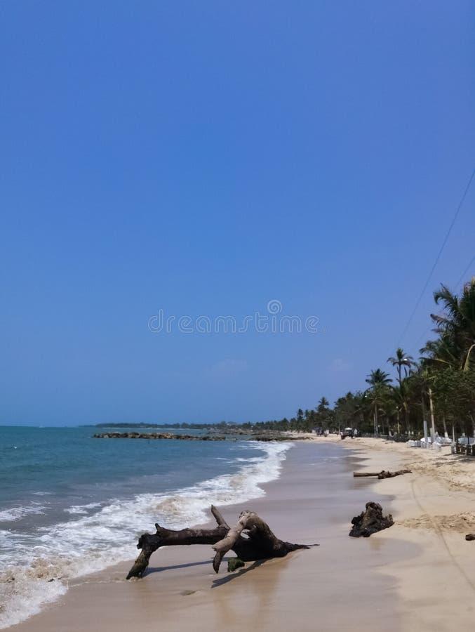 Biała piasek plaża z, piana powodować fala i zdjęcia stock