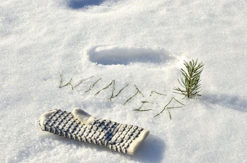 Biała rękawica z tekstem 'Zima' igieł świerkowych na tle białego śniegu ilustracji