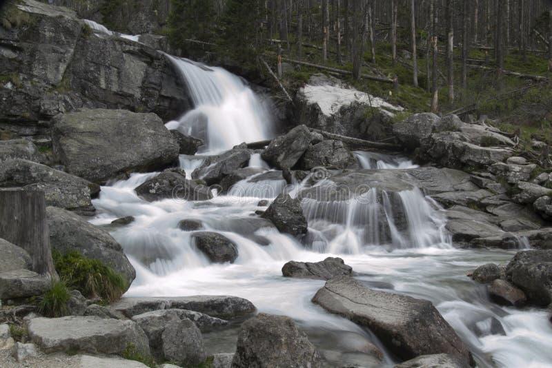 Biała strumień siklawa zdjęcie stock
