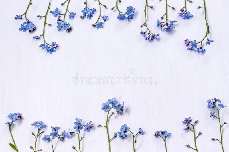 Biała tło rama kwiaty ja zdjęcia royalty free