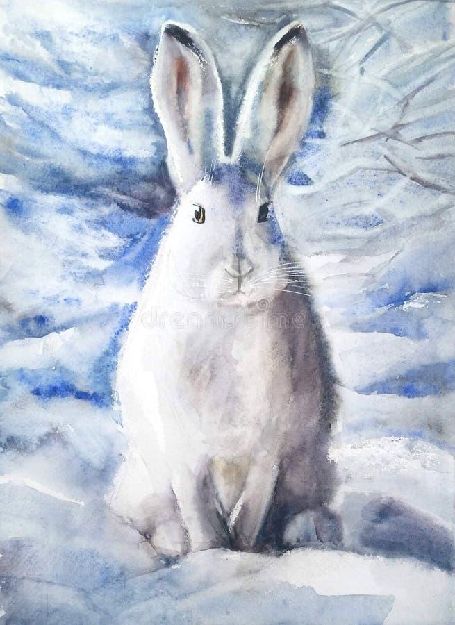 Biała zając w śniegu royalty ilustracja