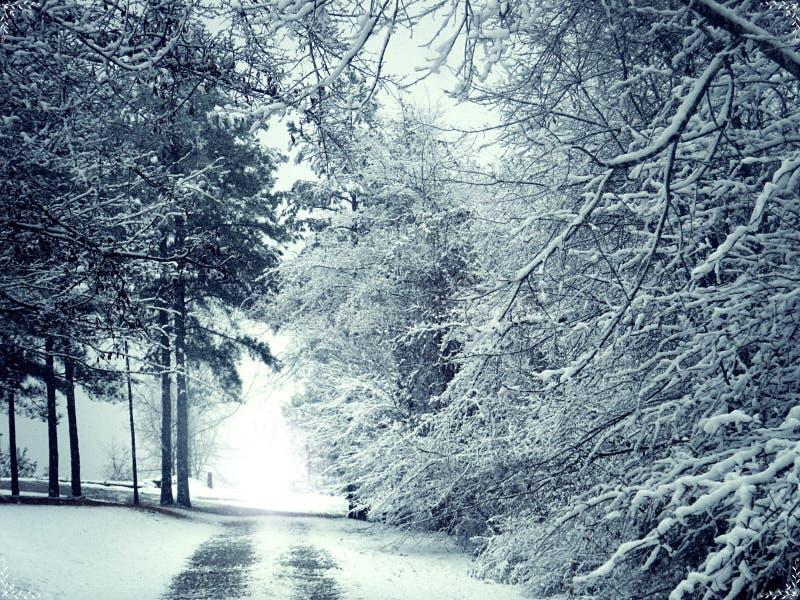 Biała zima śniegu droga obrazy royalty free