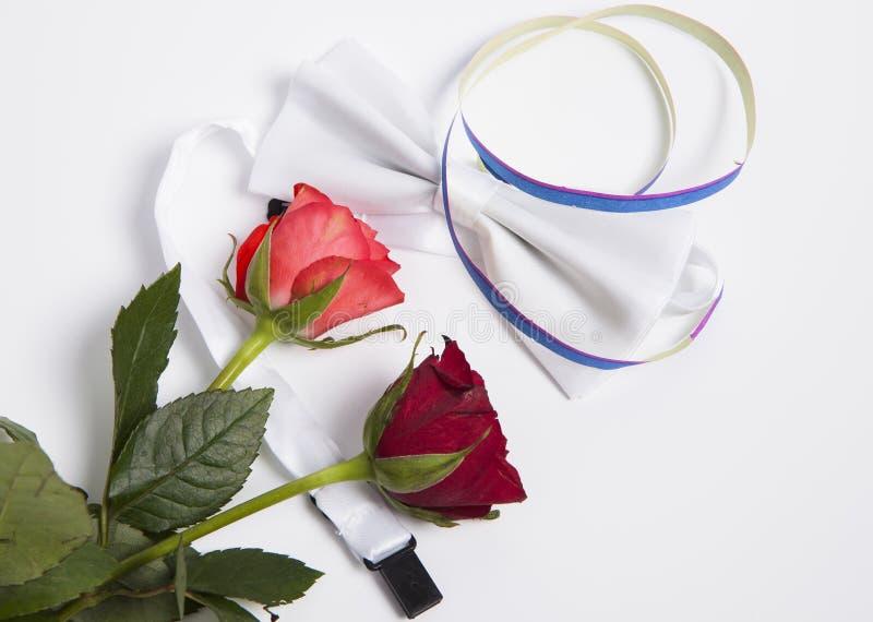 Białe łęk róże i krawat obrazy stock