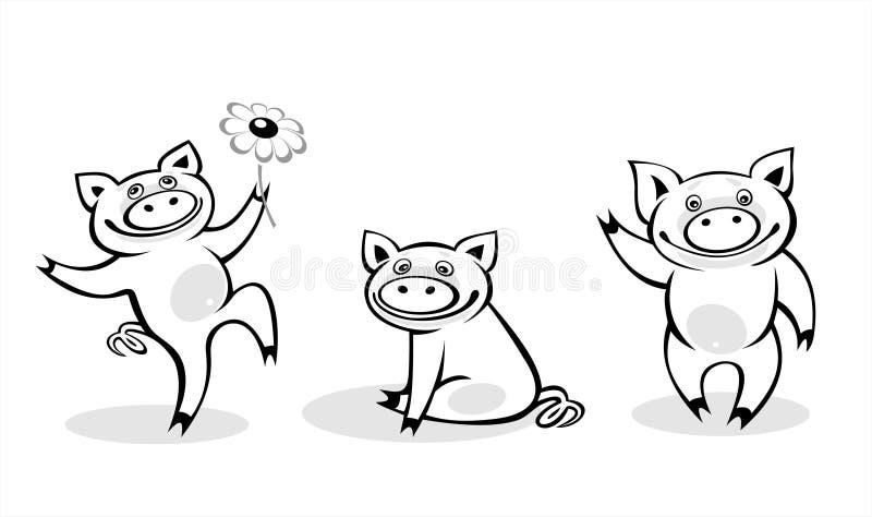białe czarne świnie ilustracji
