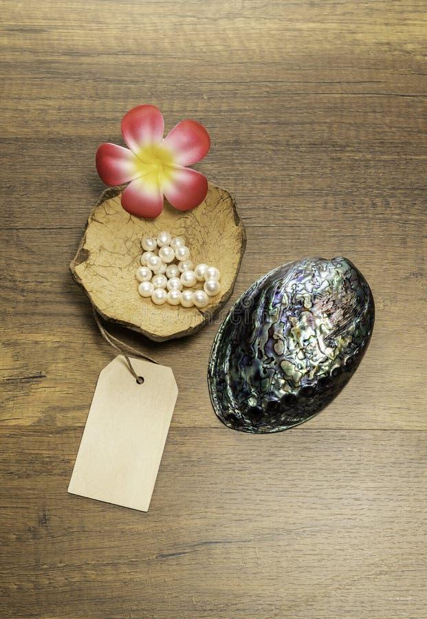 Białe perły w Kokosowej skorupie i pięknej perełkowej skorupie z kwiatem i metką fotografia stock