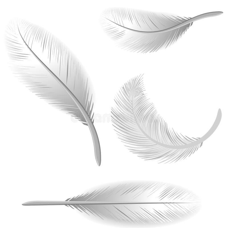 białe pióra odizolowane ilustracja wektor