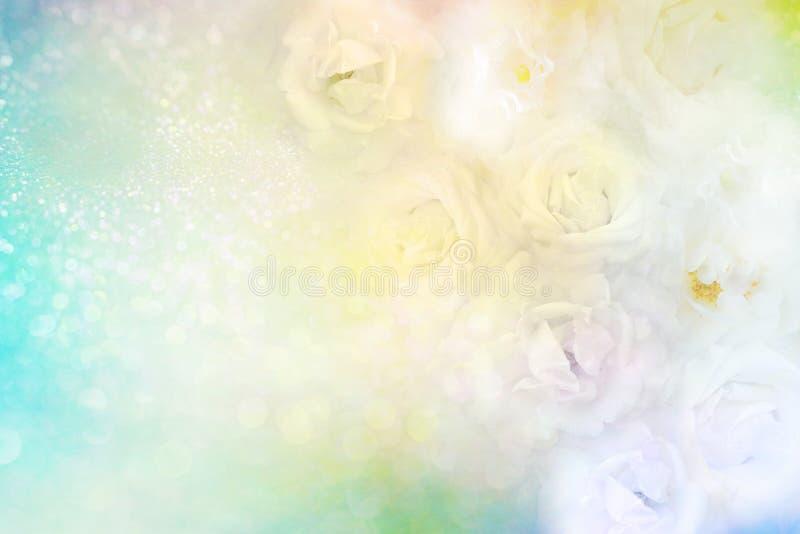 Białe róże kwitną granicę na miękkim błyskotliwości tle dla valentine lub ślubną kartę w zielonym pastelowym brzmieniu fotografia stock