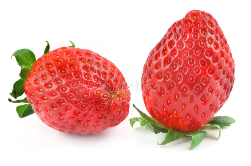 białe truskawki. obraz stock