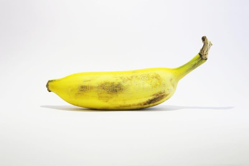 Białego bezszwowego tła bananowy owocowy wizerunek zdjęcia stock