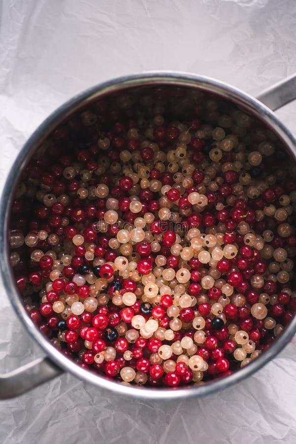 Białego i czerwonego rodzynku jagody w garnku obraz royalty free