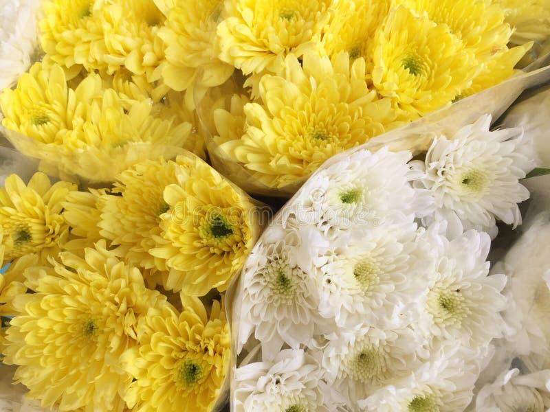 Białego kwiatu kolor żółty kwitnie w bukiecie fotografia stock
