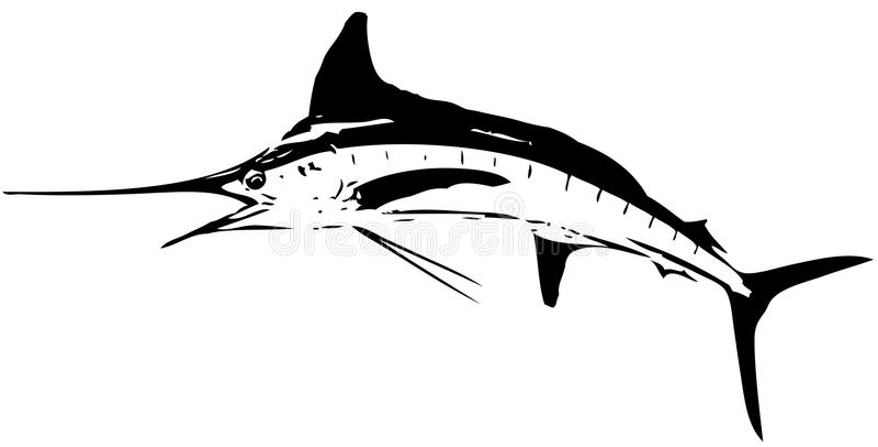 Białego marlin ryba wektor royalty ilustracja