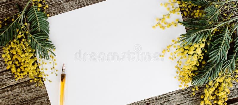Białego papieru egzamin próbny up z kolorów żółtych kwiatów mimosas i rocznika pióra atramentem na popielatym drewnianym tle obrazy stock