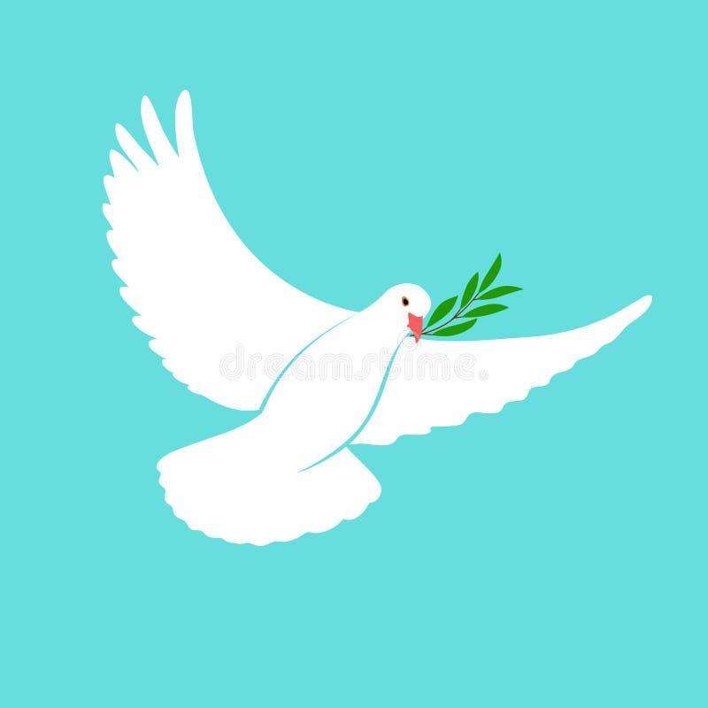 Białej gołąbki Wektorowa ikona z gałązką oliwną Pokoju symbol Gołębia Odosobniony logo Biały Latającego ptaka emblemat Mieszkanie ilustracji