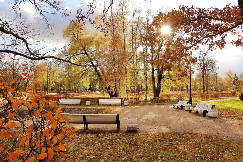 Biały ławka słoneczny dzień w jesieni miasta parku zdjęcie stock