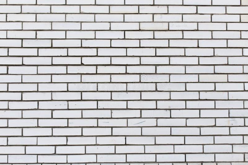 Biały ściana z cegieł, tło tekstura fotografia royalty free