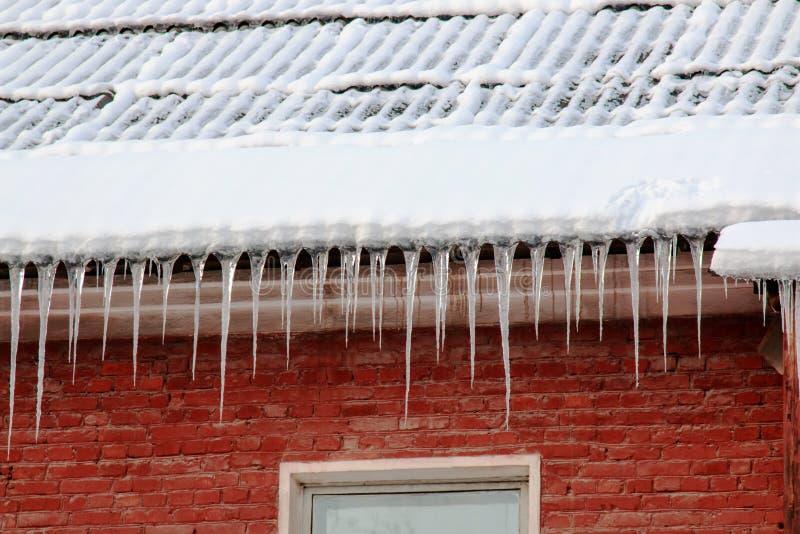 Biały śnieg na dachu dom wiesza od łupkowego dachu czerwonej cegły sople i zdjęcia royalty free