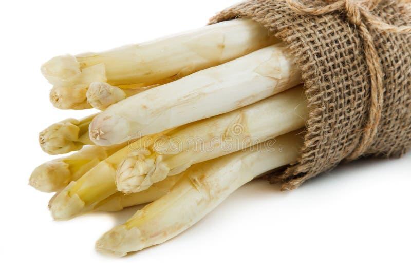 Biały asparagus obraz royalty free