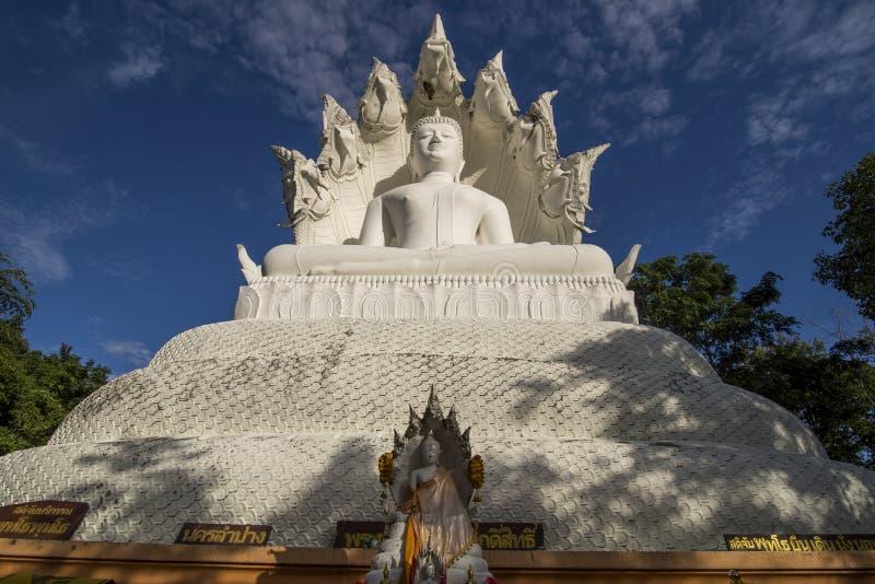 Biały Bhuddha obraz stock