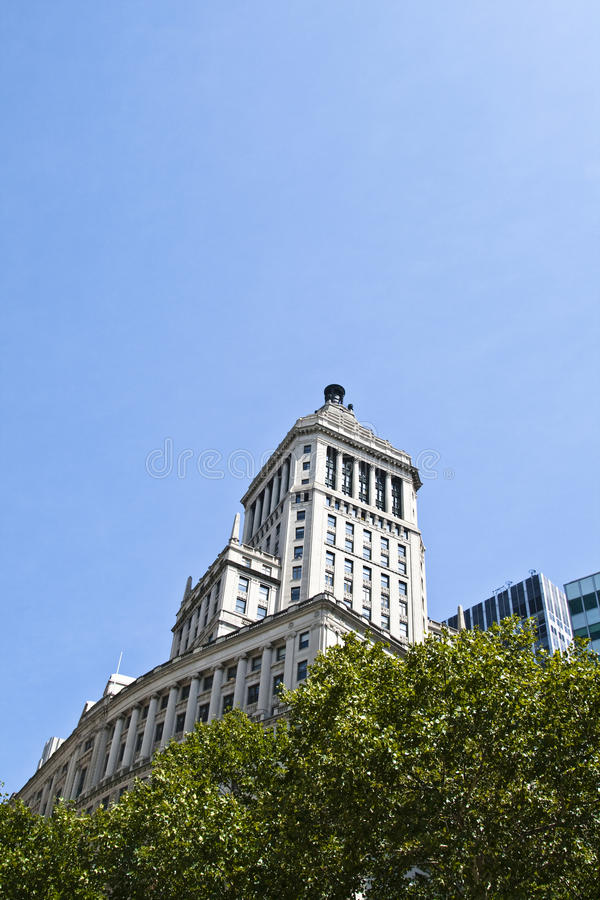 biały budynków drzewa biurowi starzy zdjęcia royalty free