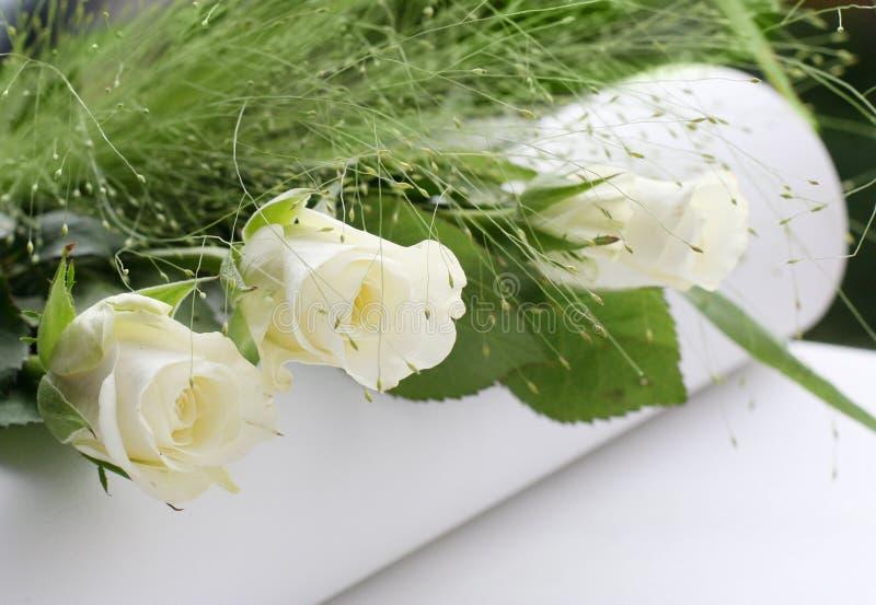 biały bukiet róże fotografia royalty free