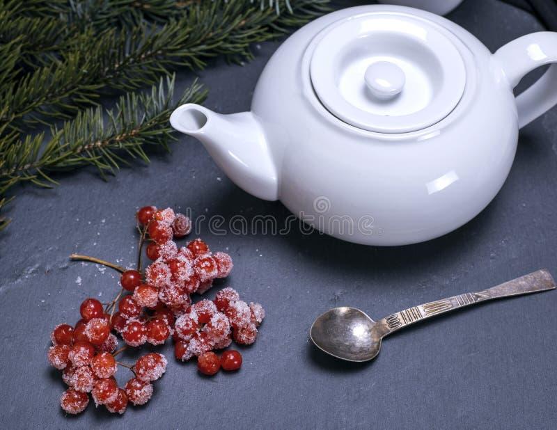 Biały ceramiczny piwowar i gałąź viburnum zdjęcie royalty free