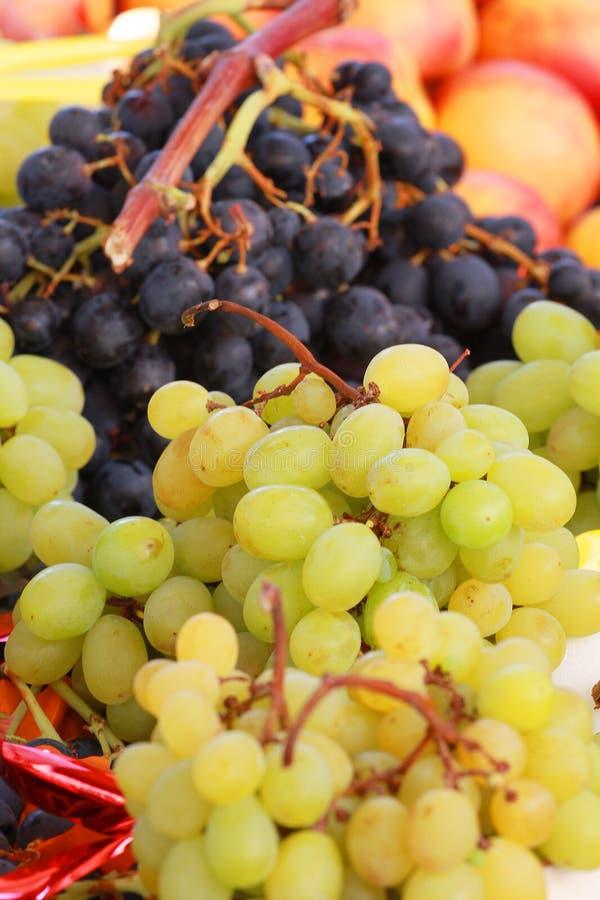 biały czarny winogrona fotografia royalty free