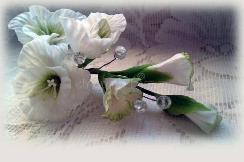 biały delikatni kwiaty zdjęcia stock