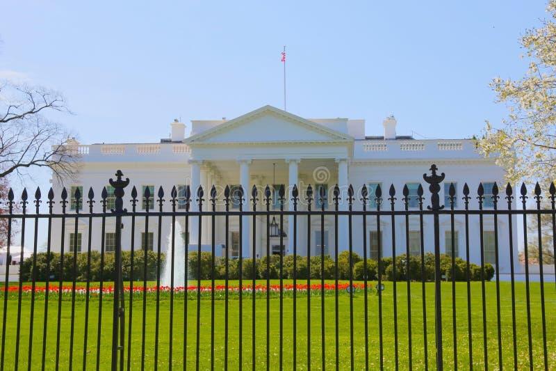 biały dom zdjęcia royalty free