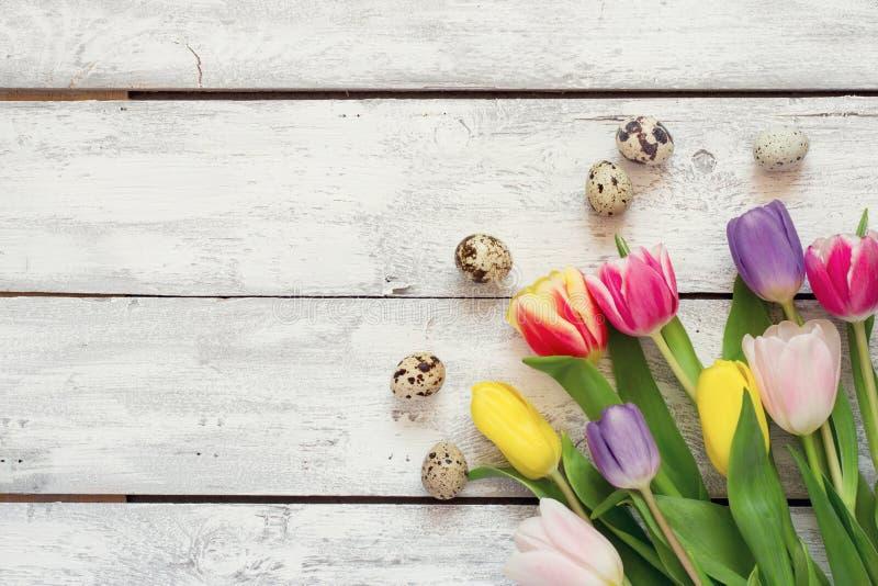 Biały drewniany Wielkanocny tło z tulipanami i jajkami obraz royalty free