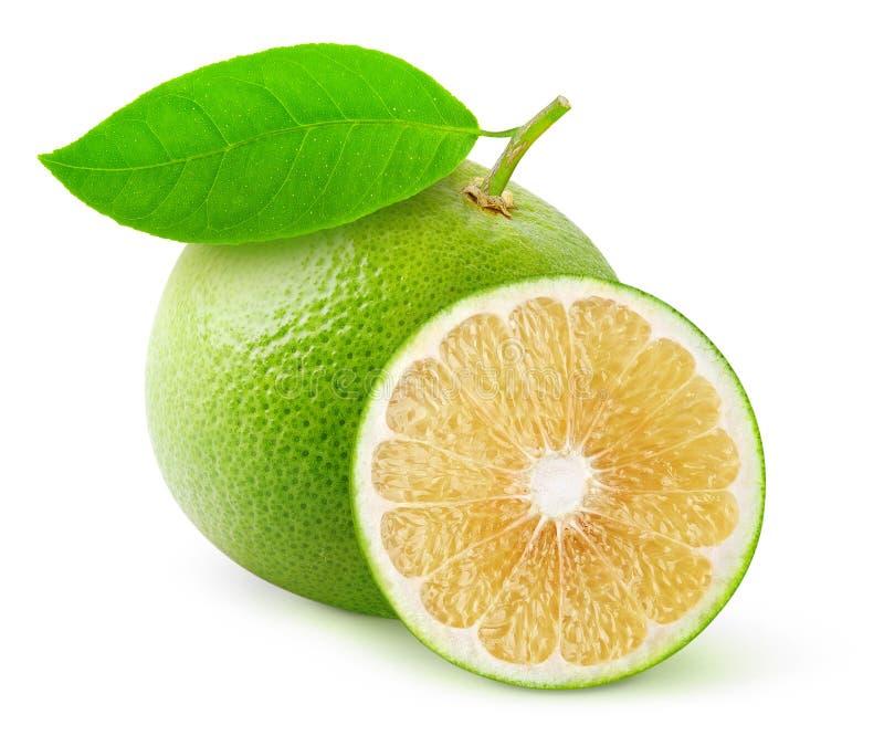 Biały grapefruitowy obrazy stock