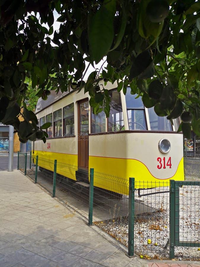 Biały i żółty tramwaj, zielony pomarańczowy drzewo zdjęcia stock