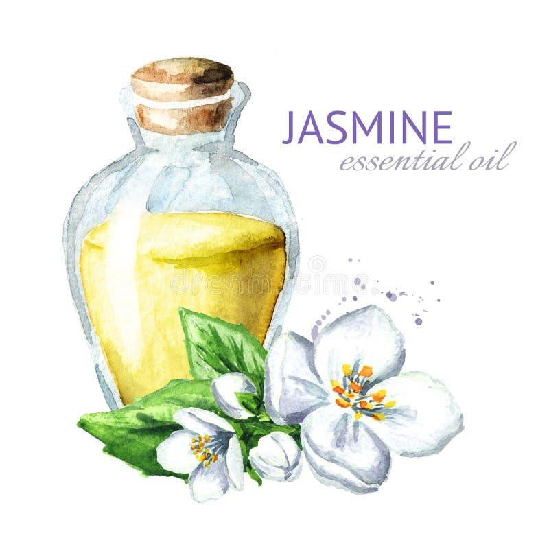 Biały jaśminowy kwiat i istotny olej aromatherapy zdrój Akwareli ręka rysująca ilustracja, odizolowywająca na białym tle royalty ilustracja