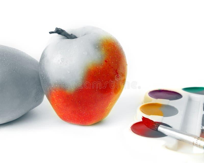 biały jabłczane farby fotografia royalty free