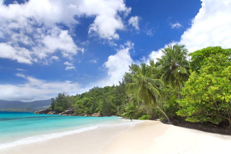 Biały korala plaży piasek i lazur ocean indyjski. obrazy stock