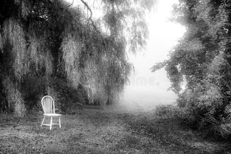 Biały krzesło z drzewami i mgłą fotografia royalty free