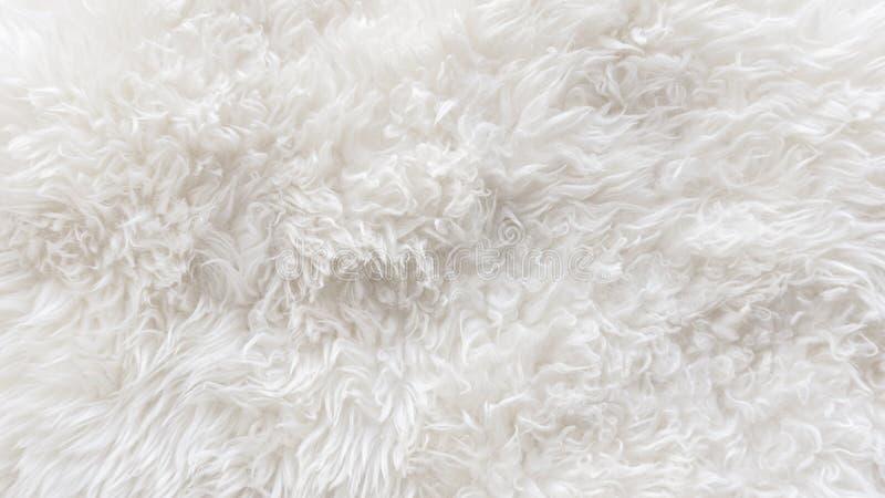 Biały miękki wełny tekstury tło, bezszwowy cottonwool, lekka naturalna barania wełna, zakończenia biały puszysty futerko tekstura fotografia stock