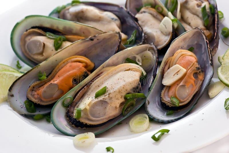 biały mussels wino obrazy stock