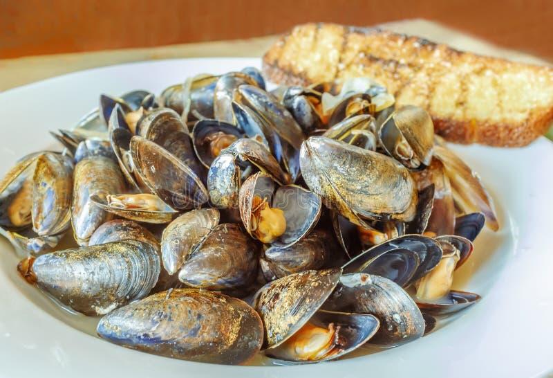 Biały naczynie pełno dekatyzować gorących gotujących mussels z otwartymi skorupami obraz stock