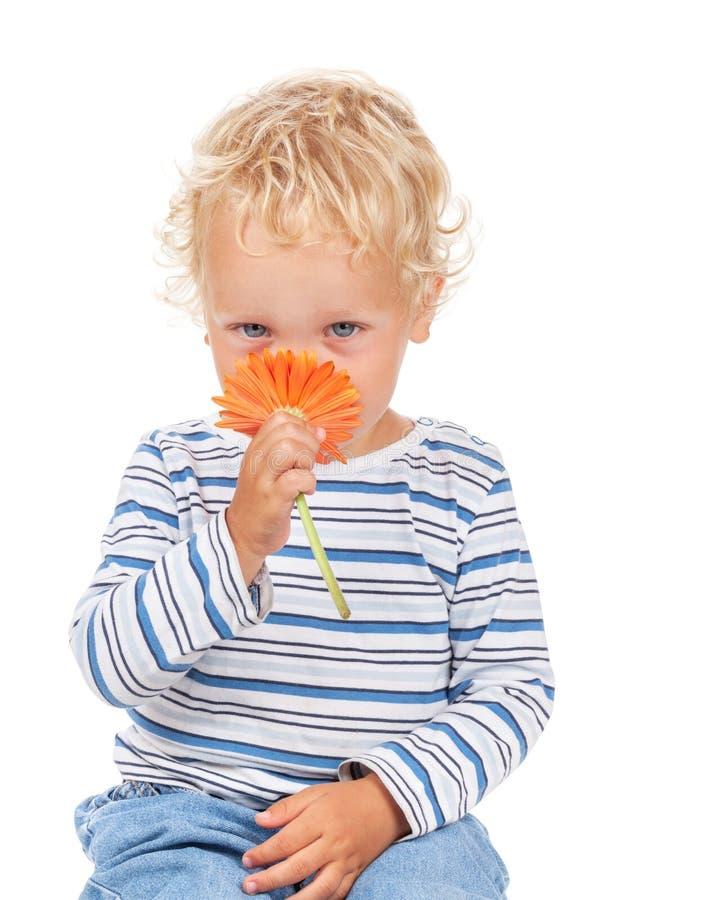 Biały niebieskiego oka dziecko z kwiatem i zdjęcie stock