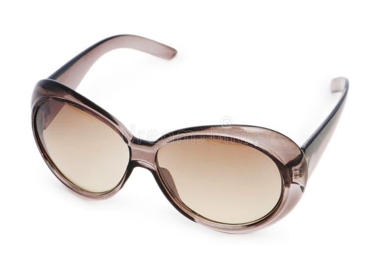 biały odosobneni eleganccy okulary przeciwsłoneczne obraz royalty free