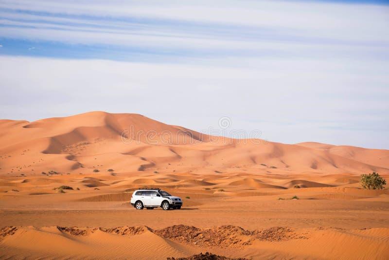 Biały offroad samochodowy jeżdżenie w Sahara merzouga Morocco Wysokie piasek diuny w tle Pustynny jeżdżenie Rekonesansowy offroad obrazy royalty free