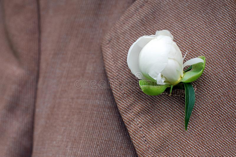 Biały peonia pączka set w oldfashioned żakieta lapel buttonhole zdjęcia stock