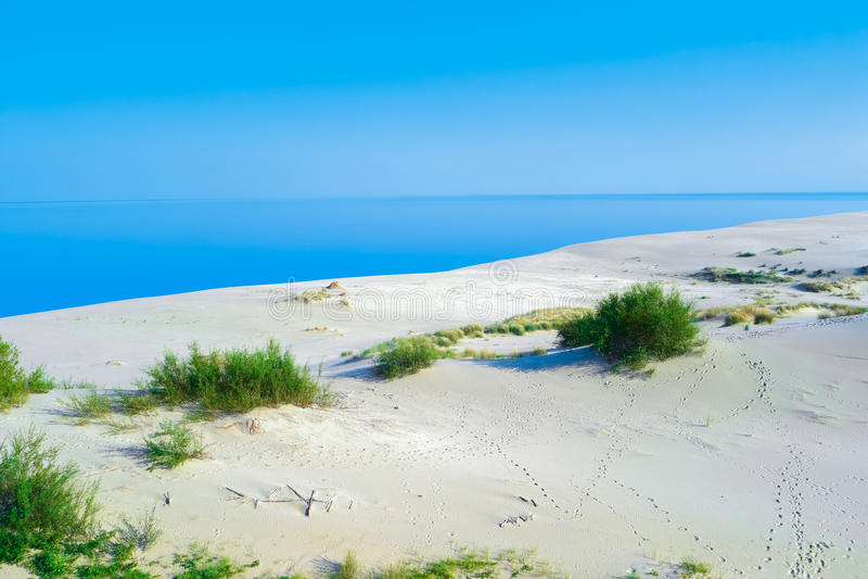 biały piasek diuna obraz stock