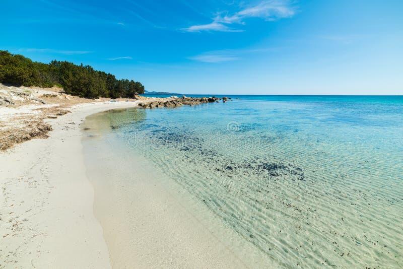 Biały piasek w Cala d'Ambra obraz stock