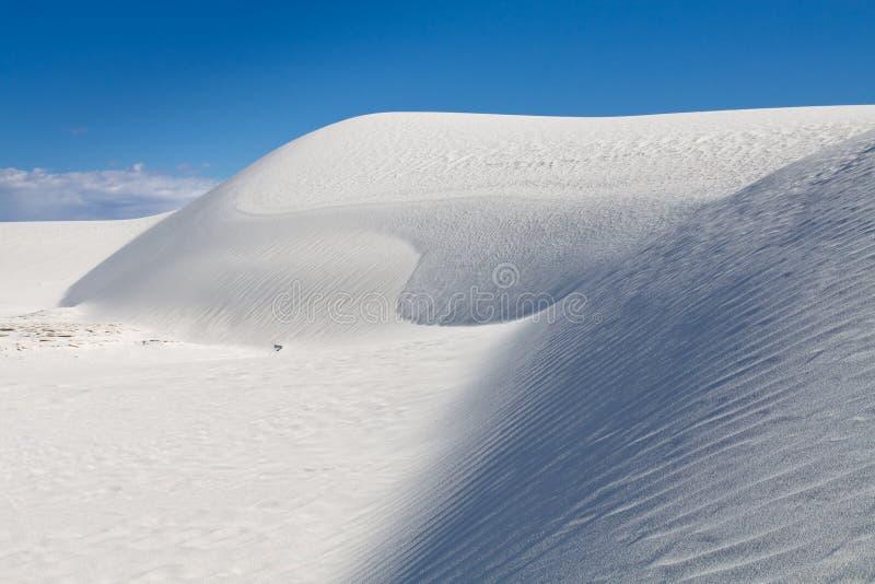 biały piasków wydmowi pomnikowi krajowi piaski zdjęcia stock