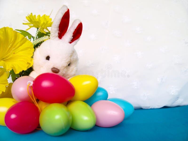 Biały pluszowy królik z kolorowymi Wielkanocnymi jajkami i kolorem żółtym kwitnie obraz stock
