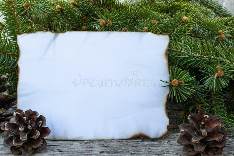 Biały prześcieradło papier palił wzdłuż zieleni gałąź choinka na tle i krawędzi stare, drewniane deski, zdjęcia stock