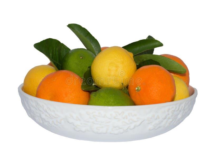 Biały puchar cytryna, wapno i mandaryny, obrazy stock